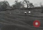 Image of Emergency Conservation Work members United States USA, 1933, second 3 stock footage video 65675023605