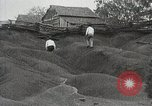 Image of Emergency Conservation Work members United States USA, 1933, second 9 stock footage video 65675023605