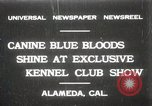 Image of Kennel club show Alameda California USA, 1931, second 1 stock footage video 65675023608