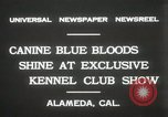 Image of Kennel club show Alameda California USA, 1931, second 3 stock footage video 65675023608