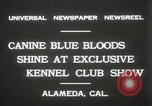 Image of Kennel club show Alameda California USA, 1931, second 4 stock footage video 65675023608