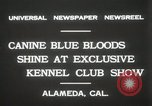 Image of Kennel club show Alameda California USA, 1931, second 5 stock footage video 65675023608