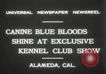 Image of Kennel club show Alameda California USA, 1931, second 6 stock footage video 65675023608