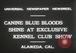 Image of Kennel club show Alameda California USA, 1931, second 7 stock footage video 65675023608