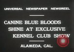 Image of Kennel club show Alameda California USA, 1931, second 8 stock footage video 65675023608