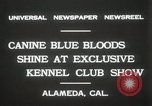 Image of Kennel club show Alameda California USA, 1931, second 10 stock footage video 65675023608