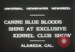 Image of Kennel club show Alameda California USA, 1931, second 11 stock footage video 65675023608