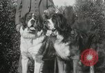 Image of Kennel club show Alameda California USA, 1931, second 12 stock footage video 65675023608
