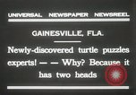 Image of Two headed turtle Gainesville Florida USA, 1931, second 2 stock footage video 65675023611