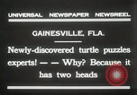 Image of Two headed turtle Gainesville Florida USA, 1931, second 4 stock footage video 65675023611