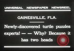 Image of Two headed turtle Gainesville Florida USA, 1931, second 6 stock footage video 65675023611