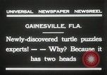 Image of Two headed turtle Gainesville Florida USA, 1931, second 7 stock footage video 65675023611