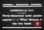 Image of Two headed turtle Gainesville Florida USA, 1931, second 8 stock footage video 65675023611