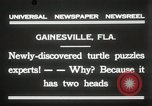 Image of Two headed turtle Gainesville Florida USA, 1931, second 9 stock footage video 65675023611