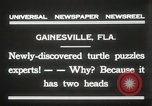 Image of Two headed turtle Gainesville Florida USA, 1931, second 10 stock footage video 65675023611