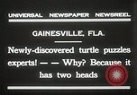 Image of Two headed turtle Gainesville Florida USA, 1931, second 11 stock footage video 65675023611