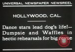 Image of dogs perform in revue Hollywood California USA, 1931, second 9 stock footage video 65675023622