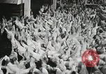 Image of scenes of poultry farm Berlin Germany, 1931, second 11 stock footage video 65675023633