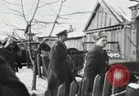 Image of Germans surrender during Battle of Stalingrad Stalingrad Russia Soviet Union, 1942, second 2 stock footage video 65675023659