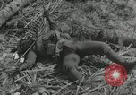 Image of casualty during Battle of Tarawa Gilbert Islands, 1943, second 3 stock footage video 65675023683