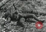 Image of casualty during Battle of Tarawa Gilbert Islands, 1943, second 10 stock footage video 65675023683