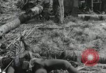Image of casualty during Battle of Tarawa Gilbert Islands, 1943, second 12 stock footage video 65675023683