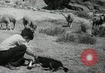 Image of Navajo people's lifestyle United States USA, 1938, second 1 stock footage video 65675023688