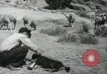 Image of Navajo people's lifestyle United States USA, 1938, second 2 stock footage video 65675023688