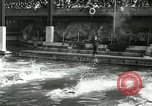 Image of Swimming race San Francisco California USA, 1916, second 6 stock footage video 65675023768