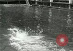 Image of Swimming race San Francisco California USA, 1916, second 9 stock footage video 65675023768