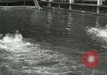 Image of Swimming race San Francisco California USA, 1916, second 11 stock footage video 65675023768