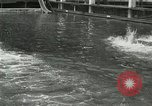 Image of Swimming race San Francisco California USA, 1916, second 12 stock footage video 65675023768