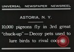 Image of Pigeons released in Chuck-up Astoria New York USA, 1931, second 4 stock footage video 65675023807