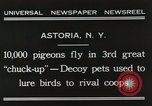 Image of Pigeons released in Chuck-up Astoria New York USA, 1931, second 6 stock footage video 65675023807