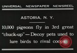 Image of Pigeons released in Chuck-up Astoria New York USA, 1931, second 7 stock footage video 65675023807