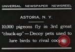 Image of Pigeons released in Chuck-up Astoria New York USA, 1931, second 10 stock footage video 65675023807