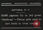 Image of Pigeons released in Chuck-up Astoria New York USA, 1931, second 12 stock footage video 65675023807