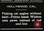 Image of Cat Izaak Walton Hollywood Los Angeles California USA, 1930, second 1 stock footage video 65675023911