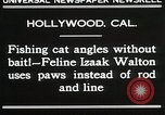 Image of Cat Izaak Walton Hollywood Los Angeles California USA, 1930, second 2 stock footage video 65675023911