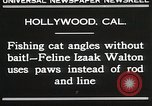 Image of Cat Izaak Walton Hollywood Los Angeles California USA, 1930, second 3 stock footage video 65675023911