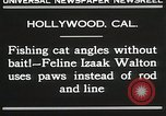 Image of Cat Izaak Walton Hollywood Los Angeles California USA, 1930, second 4 stock footage video 65675023911