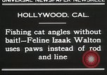 Image of Cat Izaak Walton Hollywood Los Angeles California USA, 1930, second 5 stock footage video 65675023911