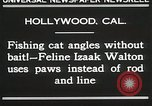 Image of Cat Izaak Walton Hollywood Los Angeles California USA, 1930, second 6 stock footage video 65675023911