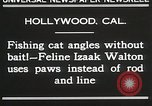 Image of Cat Izaak Walton Hollywood Los Angeles California USA, 1930, second 7 stock footage video 65675023911