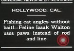 Image of Cat Izaak Walton Hollywood Los Angeles California USA, 1930, second 8 stock footage video 65675023911