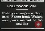 Image of Cat Izaak Walton Hollywood Los Angeles California USA, 1930, second 9 stock footage video 65675023911