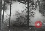 Image of probition raid United States USA, 1931, second 6 stock footage video 65675023947