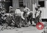 Image of Negro students learning to sow plants and build a shed Alabama United States USA, 1921, second 8 stock footage video 65675023995