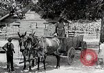Image of Tuskegee Airman 99th Pursuit Squadron visited by family Tuskegee Alabama USA, 1942, second 5 stock footage video 65675023998
