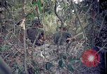 Image of Operation Cedar Falls Vietnam, 1967, second 6 stock footage video 65675024058